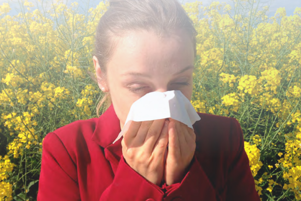 Alimentación para la alergia